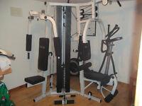 Bodycraft Galena multi-gym