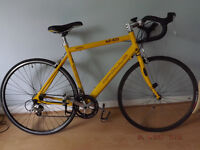 Apollo TDF 100 road bike 16 speed and nearly new tyres!!!! L@@@@@K!!!!