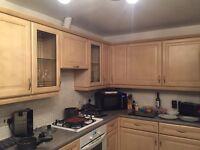 Kitchen cupboard doors - pine effect