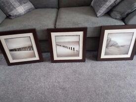 Fully Framed Set of 3 Pictures