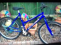 "Ladies 10 speed mountain bike 20"" frame"