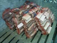 Ash fire logs