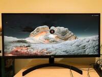 LG Ultrawide 29 Inch Monitor (29WL50S)