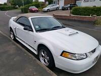 Ford mustang 4.6 v8 gt convertible