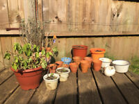 Mix lot of 17 plant pots for sale - enamel, terracota and plastic