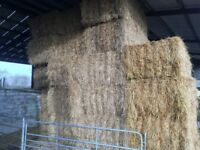 Large Bales Of Straw For Sale 8x4x3 (Scottish imported Straw) Not Hay