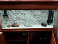 """SeaShell 'Elite' 48"""" x 15"""" x 20"""" Aquarium, Hood & Cabinet"""