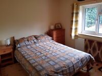 Double room to let in Brimington