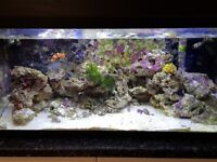 FULL KIT Fish tank Marine, Tropical or Cold water Everything You Need!!