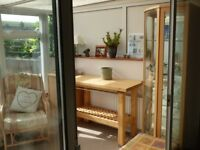 Solid Corner Display Cabinet by John E Coyle Ltd.