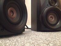 pair of technics loudspeakers