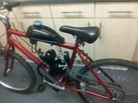 80cc Motorized Bike, Pedal And Pop, Petrol, Motorbike