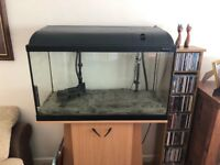 Large free standing fish tank with filter and equipment for sale (fish not included)
