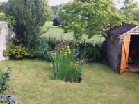 2 bed period cottage to rent, with garden and rural views in a village location.