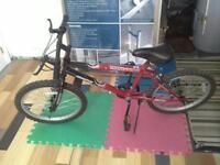 Vélo garçon  16po