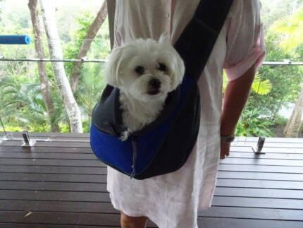 convenient pet carrier