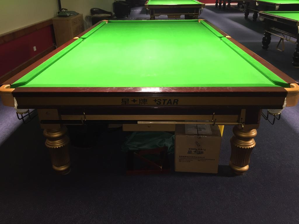 Star (Xing Pai) Professional Standard Snooker Table