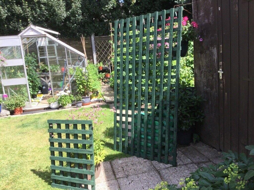 Large Garden Trellis Panels