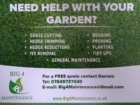 Delightful Gardener / Garden Tidy / Grass Cutting / Hedge Cutting / Hedge Reductions /  Belfast /