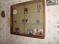 Glass Fronted Trophy/Memorabilia Wall Mounted Display Cabinet With Sliding  Glass Doors