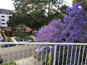 1 FREE WEEKS RENT! Waitara Hornsby Area Preview