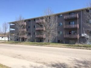 FALL SPECIAL! 1 Bedroom From $825 - Newly Renovated Ashford...