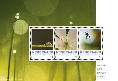 Paises Basos Flores 6 bloque nuevos s
