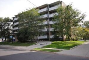 Lawrence Park Apartments - Junior 1 Bedroom Apartment for Rent