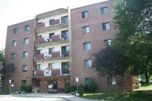 6 Lamers Court - One Bedroom Apartment Apartment for Rent