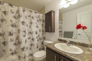 Mont Bleu 1 Bedroom Apartment for Rent: Hull, Gatineau, Quebec Gatineau Ottawa / Gatineau Area image 5