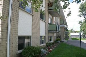 716 Downie Street - Two Bedroom Apartment Apartment for Rent