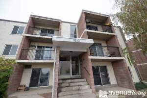 FALL SPECIAL! Bachelor From $700 - Newly Renovated Palm Road...