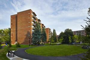 Gatineau Bachelor Apartment for Rent: 2, 4, 6, 8 & 10 rue...