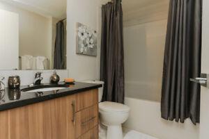 2 Bedroom for Rent - Downtown Edmonton - Pet Friendly