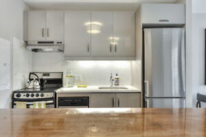 Fully renovated, Plateau & Lafontaine Park