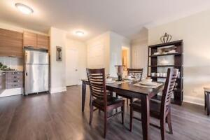 NEW 1 bedroom Brantford apartment for rent: Accessible bathroom