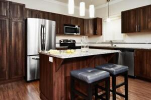 Stunning, Large 2 Bedroom Deluxe Apartment for Rent in Moncton