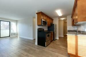 Newly Upgraded 2 Bedroom Apartment for Rent in Kelowna
