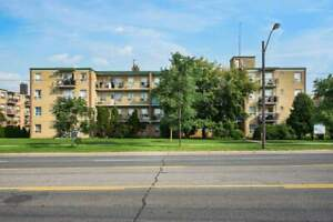 286 Finch - 1 Bedroom Apartment for Rent