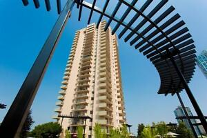 Two Bedroom/One and 1/2 Bathroom For Rent at Panarama Tower -...