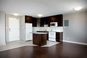 1140 Ramsey View Court  - 1 Bedroom Apartment for Rent