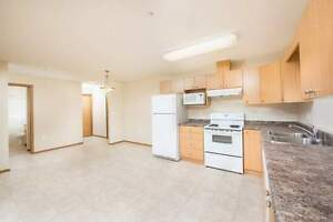 Newer 2 Bedroom Apartment For Rent w/ Suite Laundry~Tamarack Man