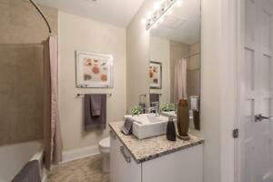 Spacious 2 Bedroom, 2 Bathroom Apartment for Rent in Brantford