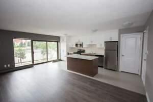 1720 Paris Street - 1 Bedroom Deluxe Apartment for Rent