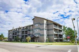 Free Rent for One Month - 1 Bedroom Fort McMurray Apartment
