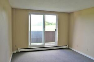 1 Bedroom Apartment for Rent in Ridgetown: Perfect for students!