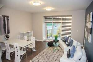 347 Hyland Drive - 1+ Bedroom Apartment for Rent