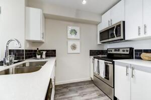 Crystallina Apartments - 2 Bedroom Apartment for Rent