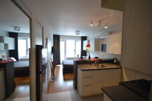Impeccable 1 1/2 furnished in the heart of the Plateau
