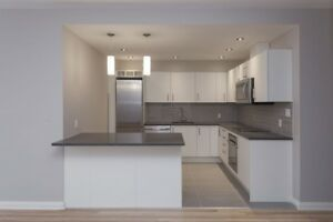 Renovated Downtown 1 bed - Terrace/Gym/Doorman - 3 1/2 - McGill